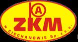 t1 ZKM
